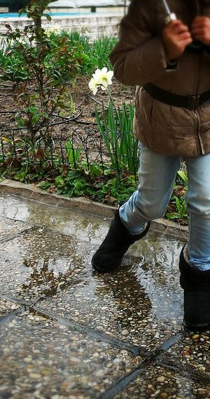 Rain Rainy Day Lluvia Piove