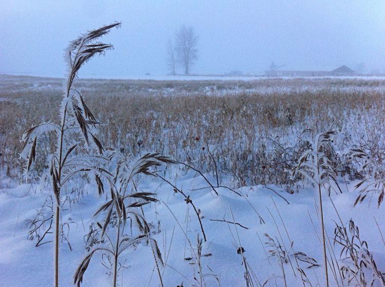 Hello World Enjoying Life Winter Latvia