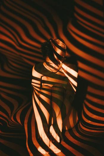 Shadow On Sensuous Naked Woman In Darkroom