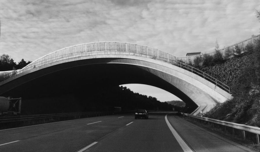 Transportation Road Car Land Vehicle Bridge - Man Made Structure Highway Connection Day The Way Forward Mode Of Transport Outdoors Architecture Built Structure No People Sky Tree Nature The Week On EyeEm The Architect - 2018 EyeEm Awards