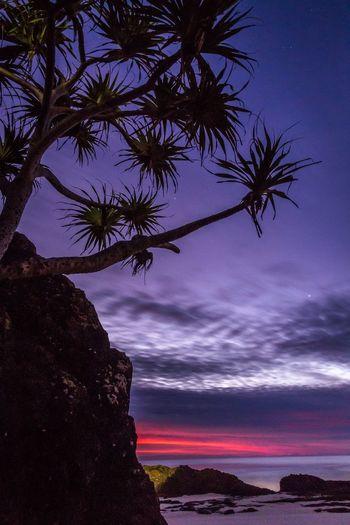 Moments before sunrise Landscape Long Exposure Australia EyeEm Best Shots - Sunsets + Sunrise GoldCoast Queensland Landscape_Collection Surfing Currumbin