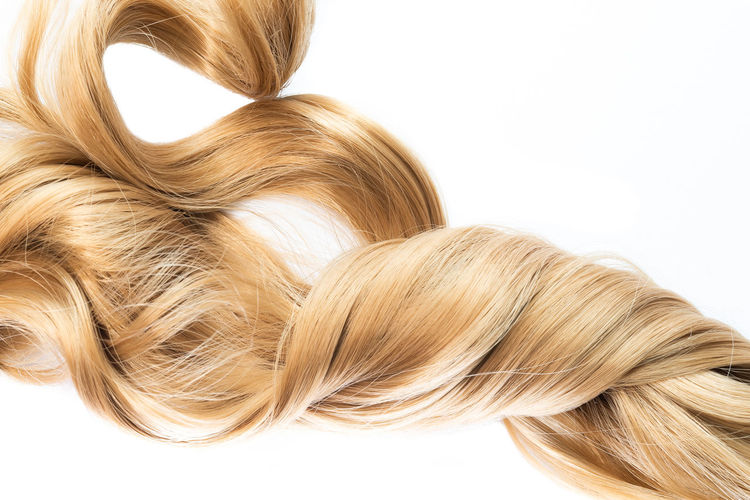 Close-Up Of Blond Hair Against White Background