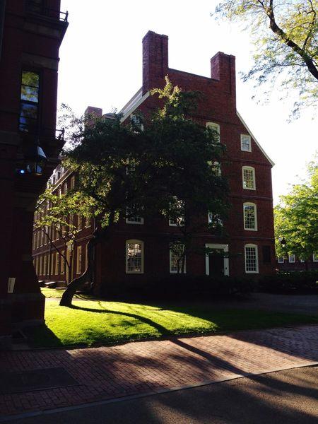 Harvard University Cambridge America