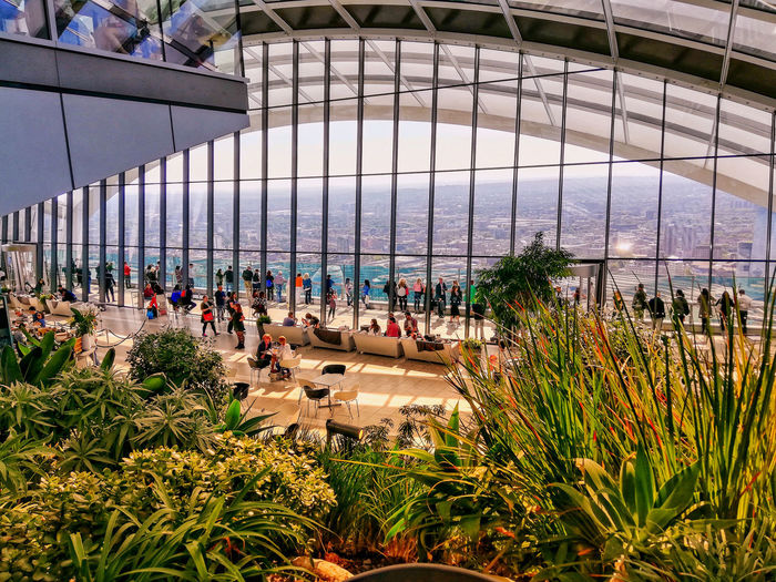 Colourful Sky Gardens London Skygardens Water Greenhouse Flower Tree Sky Architecture Plant Botanical Garden Horizon Over Water Hooded Beach Chair In Bloom Growing Dahlia Botany Wave Flowering Plant Groyne Blossom Rushing Flower Head Pollen Ocean Plant Life Bud Crocus Shore Beach Apple Blossom