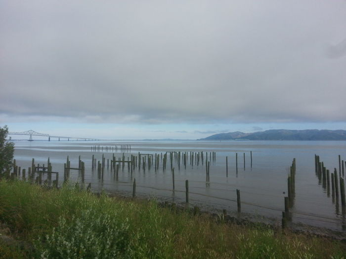 Landscape Horizon Over Water Tranquility Water Outdoors Scenics No People Cloud - Sky Beach Day Fog Beauty In Nature Sky Tide Environment Astoria, OR Astoria, Oregon Columbia River Northcoastrecovery Water's Edge Tranquil Scene Beauty In Nature Reflection Tranquility Nature