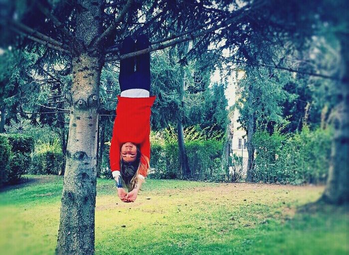 Don't worry, be happy! 🙃🌲❤ Happy Tree Crazy Looking At Camera Landscape Nature Freedom Like A Child Green Color Red One Girl Only Reverse Bestmoment Adapted To The City EyeEmNewHere Having Fun Women Of EyeEm Lifestyles Young Adult Tattoo Red Riding Hood Smile Monkey Beautiful Hanging Out