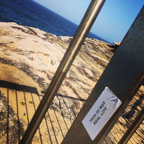 Alternativeliving Coast Cliff Sydney Bondi Spring