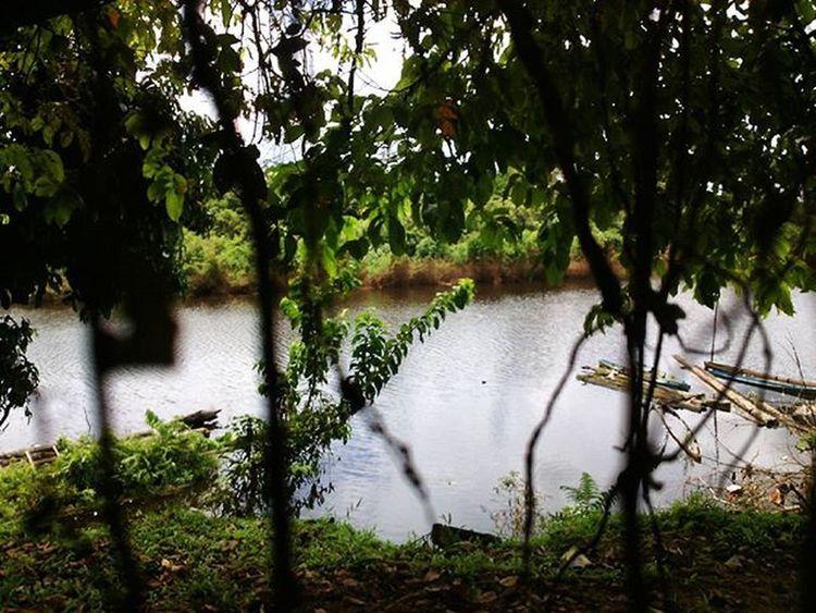 """Under the big hot sun "" Like4like Lyric  River Tree Leaf Nature Outdoor Panorama Green Photooftheday Me Water Song Dj Dubstep FLStudio Sun Day Photography Instalike Streetview Tumblr"