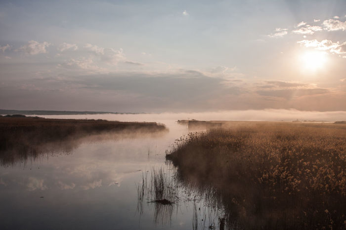 Federsee Beauty In Nature Day Fog Hazy  Lake Landscape Mist Nature No People Outdoors Reflection Scenics Sky Steam Tranquil Scene Tranquility Water