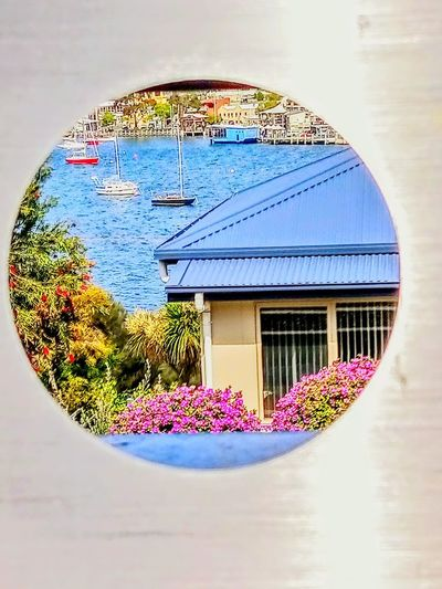 Kangaroo Bay ! shot through top of a mail box ! Frame Within A Frame Boats Street Photography Perspective Photography Urban Photography Hobart Flower Urban Scene Flowers Circle Water Close-up Sky Residential District