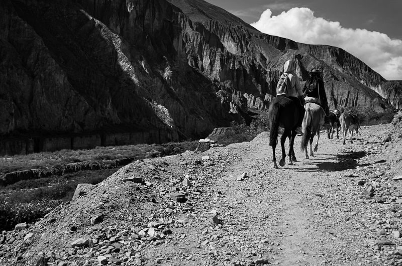Rear view of people riding horses on dirt road against mountain