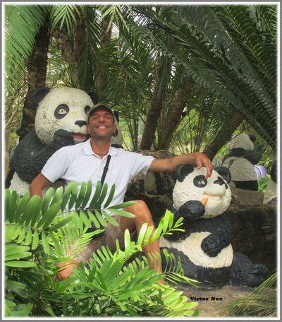 Victor Noc Art 🎱 Nong Nooch Tropical Bothanical Garden Pui E Victor 🎈👻 Thailandia 🎈👻 Pattaya City VictorNocArt Vittorio Nocente Otto Park 8 88 OttoOttoOttantotto Nature Artfoto PANDA ♡♡