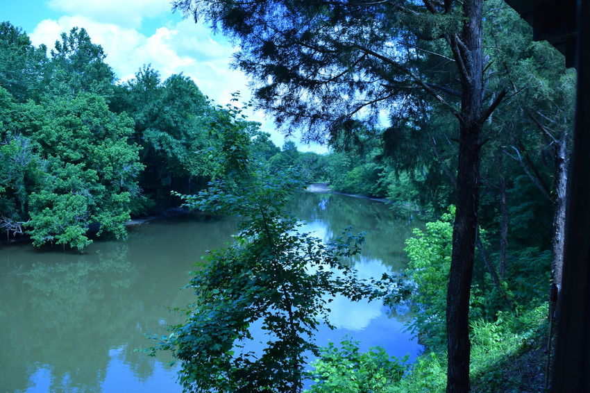 View from balcony at Jakes Fish Camp Burkville Al...Beauty In Nature Creek Lake Nature Reflection Water The Great Outdoors - 2015 EyeEm Awards Creekside Alabama Pintlala Creek Jake's Fish Camp Burkville Alabama Pintlala Creek Alabama Fishing Water Reflections Alabama Outdoors
