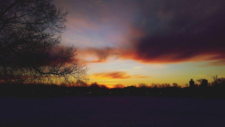 Last Day of January 2016 , Sunrise at kissena park Flushing New York City