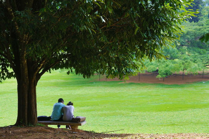 A traveller I am, and a navigator, .... and everyday I discover a new corner within my soul! Friendship In Love Lawn Leisure Activity Lifestyles Park Bench Peradeniya Relaxation Romantic Place Romantic Scenery Sitting On A Park Bench Togetherness Vacations
