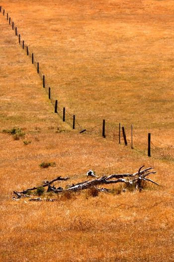 Scenic view of wooden fence on field