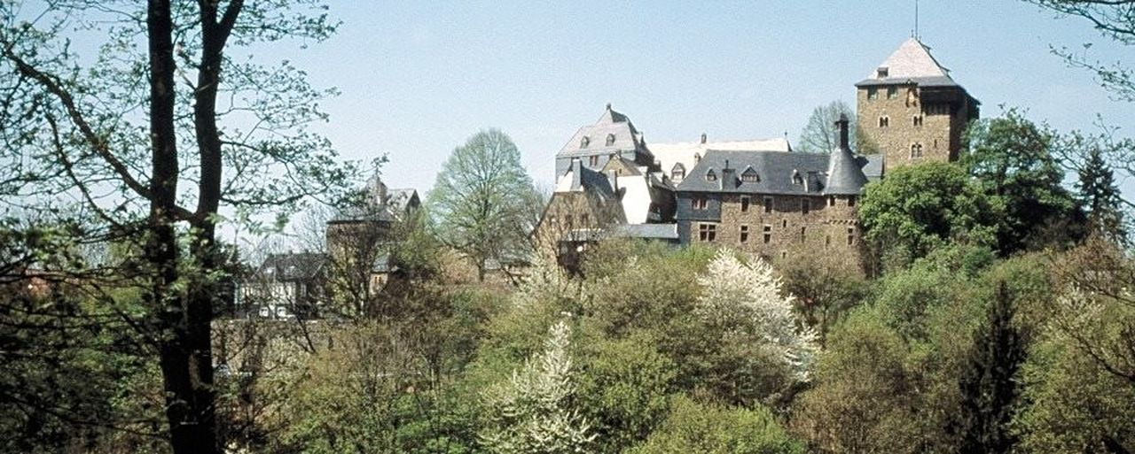 Tree Architecture Building Exterior Outdoors Built Structure Sky Clear Sky Rural Scene Day No People Plant Nature Schloss Burg Schloß Burg - Solingen Solingen Beauty In Nature Outdoors❤ Nature Followforfollow Castles Architecture Forest