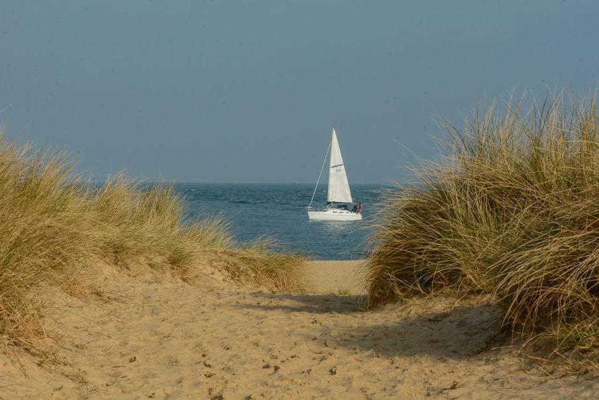 Gentle Breeze Dorset Coast Studland Beach Beach Scene  Blue Sea And Blue Sky Sand Dunes Shell Bay Studland Bay White Sail Boat