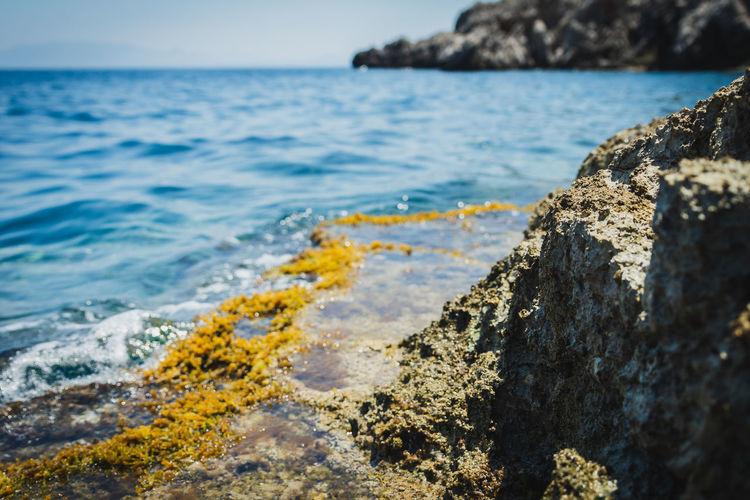 Colors Landscape_Collection Landscape Summer Water Summer Exploratorium Landscape_photography Water Sea Seascape Seascape Photography