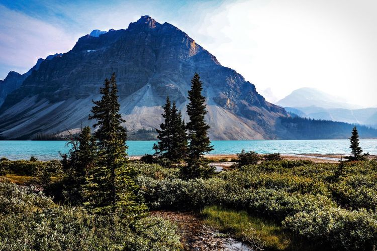 Bow Lake Banff National Park  Canada Mountain Beauty In Nature Scenics - Nature Tranquility Tranquil Scene Nature Mountain Range Sea No People Water