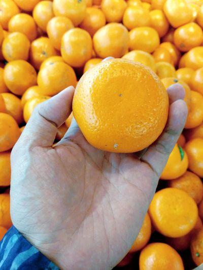 Close-up of hand holding orange fruit