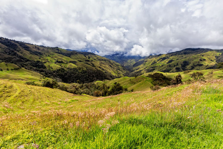 Dramatic clouds over pastures in a valley outside of Salento, Colombia. Cloud Colombia Farm Hiking Palm Pasture Quindío Rural Tree Trip Andean Cauca Colombian  Countryside Forest Hike Jeep Landscape Mountain Quindío Salento Tolima Trek Valley Wax