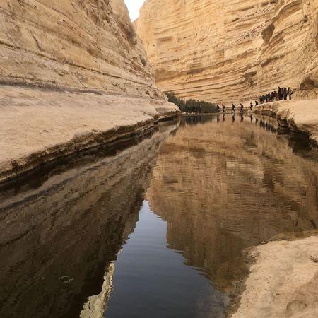 Nature Desert Israel