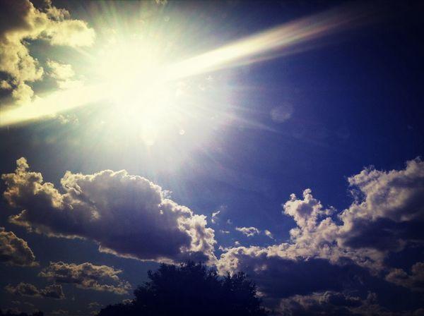 Beautiful Sun Life Nature
