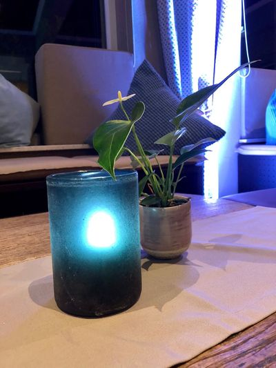Atmosphäre im Blautöne Hotelbar Table Indoors  Home Interior Potted Plant Plant No People Nature