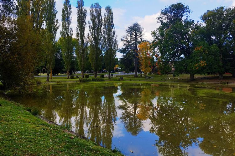 Life Is Beautiful Tranquil Scene Nature Reflection Beauty In Nature Tranquility Lake Tree Water Grass Outdoors Growth Scenics Sky Day No People First Eyeem Photo The Secret Spaces EyeEmNewHere