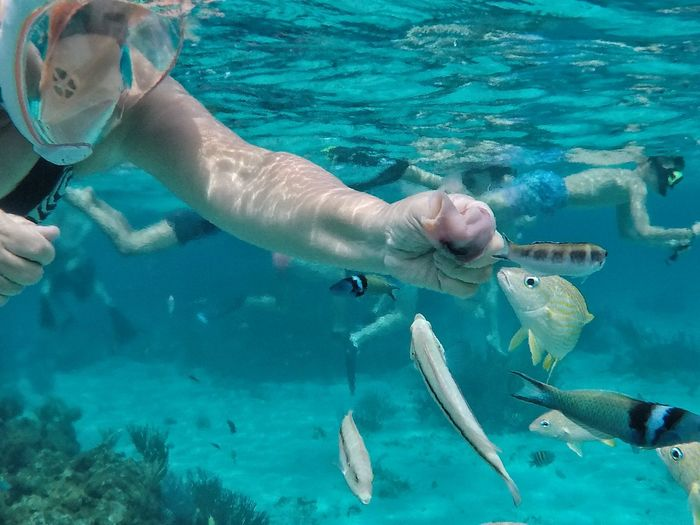 Woman feeding fish in undersea