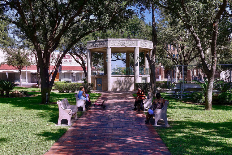 The San Agustin Plaza in Laredo in the USA. Grass San Agustin Plaza Texas Trees USA Architecture Benches Buildings Built Structure Day Laredo Outdoors Pavillion People Real People Sky Way