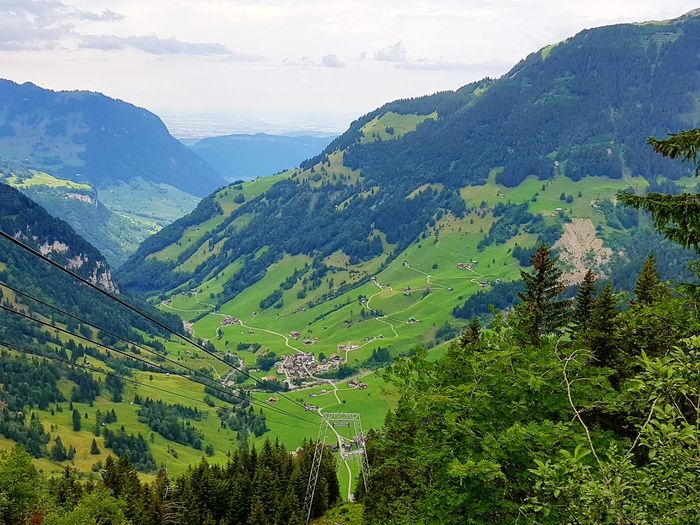 Mountain Agriculture Landscape Social Issues Nature Outdoors Tea Crop Beauty Scenics Tree Rural Scene Mountain Range Beauty In Nature No People Terraced Field Forest Day Bannalp Switzerland EyeEm Gallery Hiking Travel Destinations Vacations Sky Tree Area