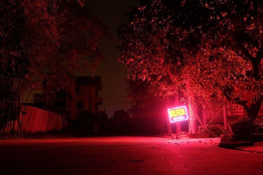 VietNamnight Ninh Binh, Vietnam Yoonjeongvin Night No People Spooky Outdoors Tree Illuminated Sky