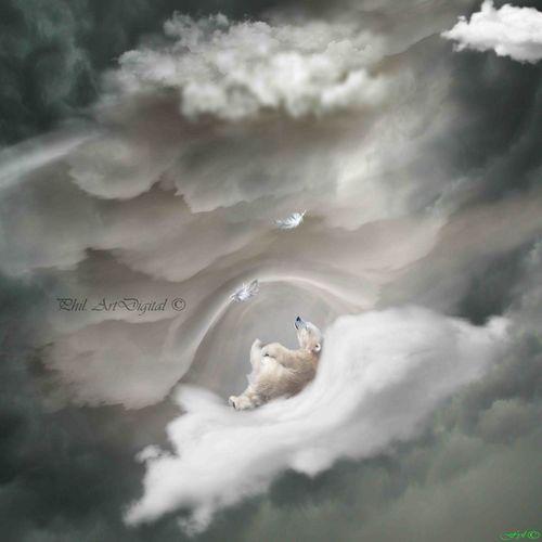 Bear Sleeping Clouds And Sky Artdigital Photoshop Fantasy Surrealist Art My Artwork Sureal Polar Bear Baby Bear Bird Flying Mountain Tree Animal Themes Sky Landscape Arctic