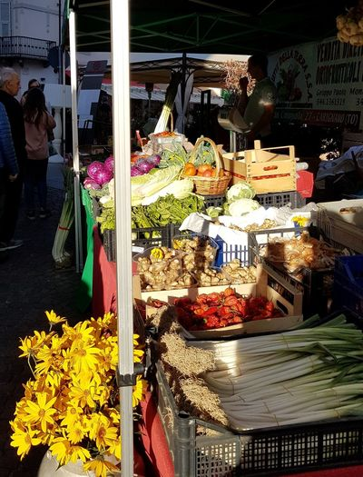 Day Outdoors Happiness Food Marketfood At The Market Vegetables & Fruits Fresh Food Market Sunlight People Abundance Arrangement Close-up Langhe Piedmont Italy Travel Destination