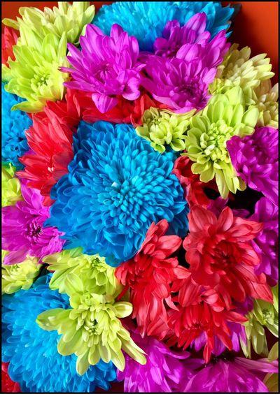 Beautiful bunch of Flower's 💐💐💐 Bouquet Bouquet Of Flowers Flowers Flower Collection Flowers Of EyeEm Rainbowflowers Flowerphotography Flowersoftheday Flowermagic Scent Of A Flower Beautifulflowers 💐💐💐