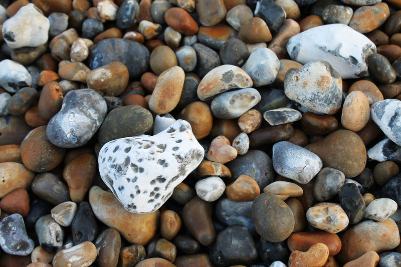 Dover Trip England Raw Beauty In Nature Rock Stone Beach Rocky Beach Abundance Backgrounds Beauty In Nature Close-up Colorful Day Full Frame Large Group Of Objects Multi Colored Nature Pebble Pebble Beach Sea Shore Stone - Object Uk Variation Coast