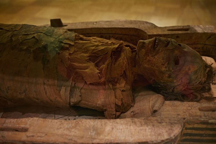 The Mummy in the Egyptian gallery. Myfujifilm EmptyROM Torontoclx Toronto ROMToronto Huffingtonpost