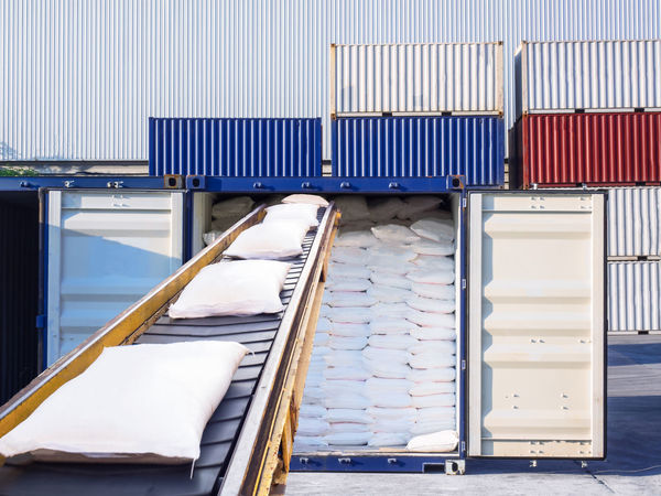 Sugar in bags are stuffing in container for export. Container Conveyor Belt Logistics Rice Sugar Thailand Bag Cargo Container Day Export Freight Freight Transportation Handling Indoors  Loose Bag No People Port Shipping  Stack Starch Stuffing Tapioca Warehouse Warehouse District White