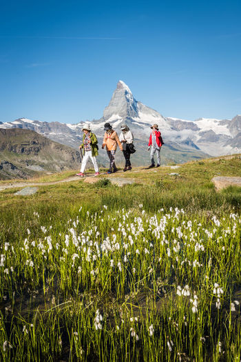 The tourists Green Nature Tourist Tourist Attraction  Tourists Alps Flowers Group Of People Landscape Leisure Activity Mountain Mountain Peak Outdoor Scenics - Nature Sky Summer Switzerland Togetherness Tourism Tourist Destination 2018 In One Photograph