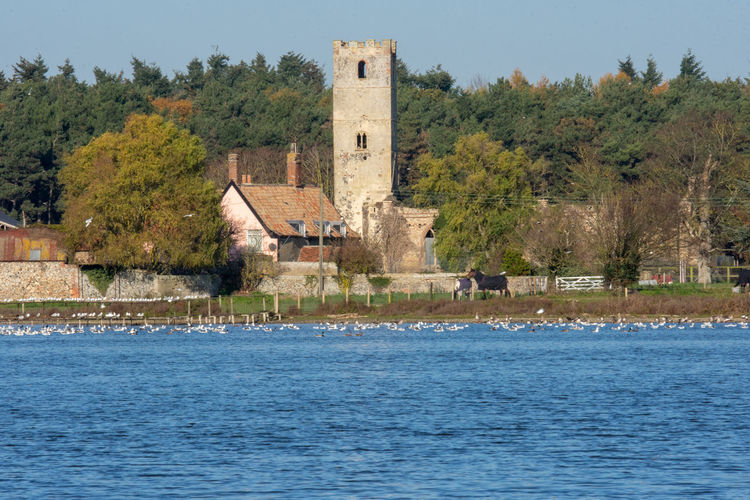 View of the church over the lake, taken at Great Livermere, Suffolk on a late November day. Suffolk Church Suffolk Landscape Lake Lake View Winter Water Landscape Landscape_photography Church Tower Church Buildings Architecture Built Structure Pastoral Pastoral Setting Pastoral Scene Building Exterior Waterfront