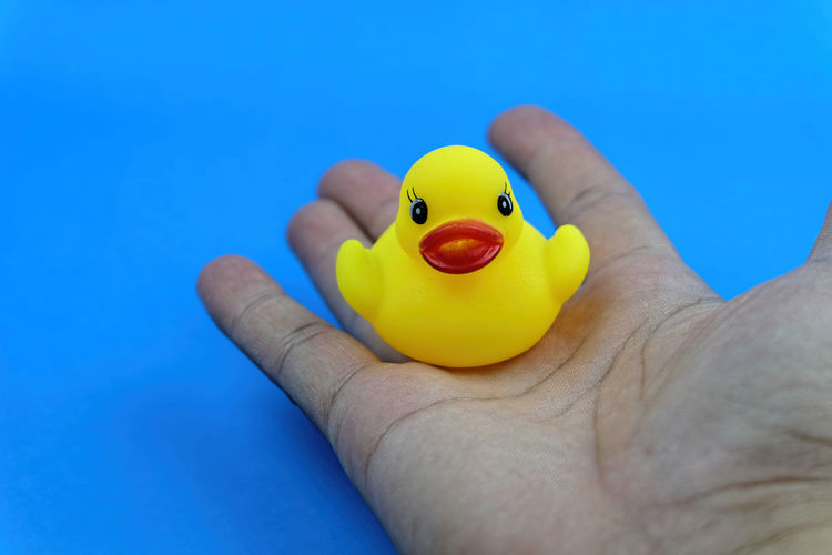 Cropped Hand Of Person Holding Rubber Duck Over Blue Background