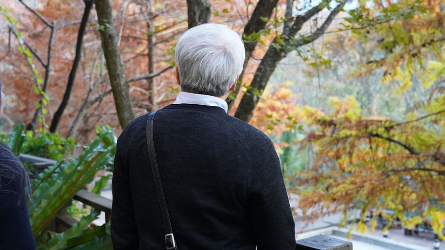 Rear view of man standing by trees during autumn