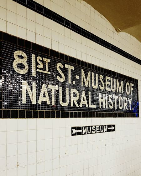 뉴욕 NY Newyorkcity New York Newyork Nationalhistorymuseum Museum Subway Camera