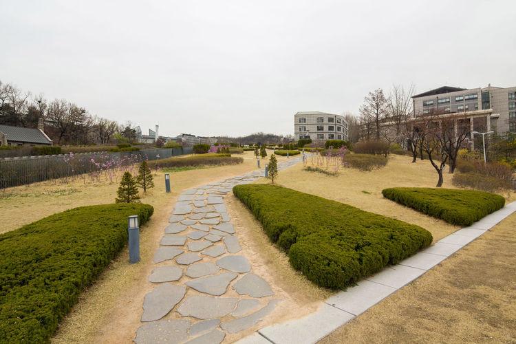 Footpath in garden against clear sky