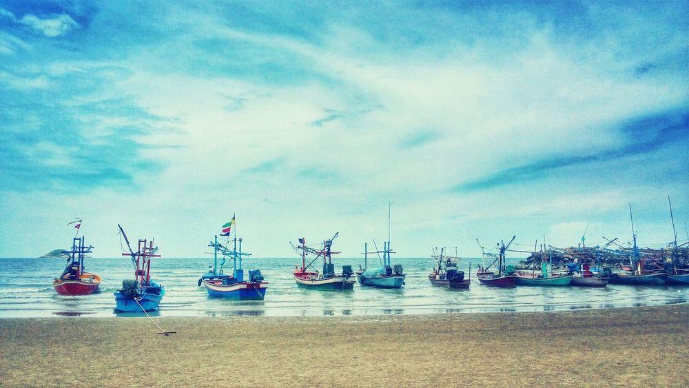 Sea Life @ Sea Side