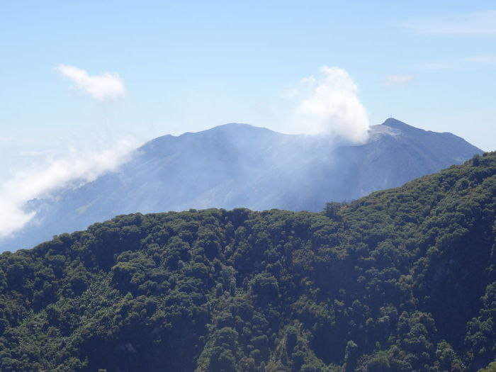 Beauty In Nature Cloud - Sky Costa Rica Costa Rica❤ Day Growth Landscape Lush - Description Mountain Nature No People Outdoors Pinaceae Pine Wood Pine Woodland Scenics Sky Smoke - Physical Structure Tree Tree Area