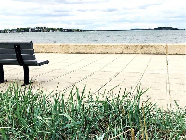 Scenics Grass Sea Tranquil Scene