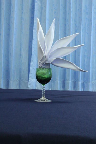 Napkin Folding NapkinFolding Napkins Close-up Curtain Day Flower Flower Head Flowering Plant Fragility Freshness Glass Glass - Material Hotel Service Indoors  Napkin Nature No People Plant Restaurant Still Life Table Transparent Vulnerability  Water